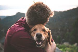 maitre-fondateur-blog-chien